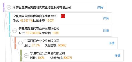永宁县望洪镇昊鑫现代农业综合服务有限公司