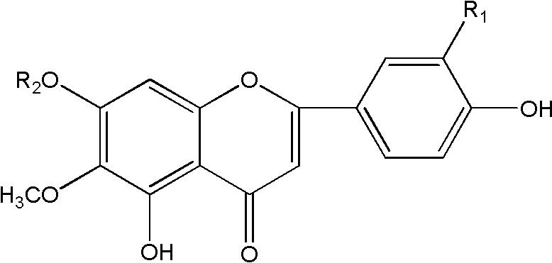 一种高纯度高车前素和泽兰黄酮的制备方法