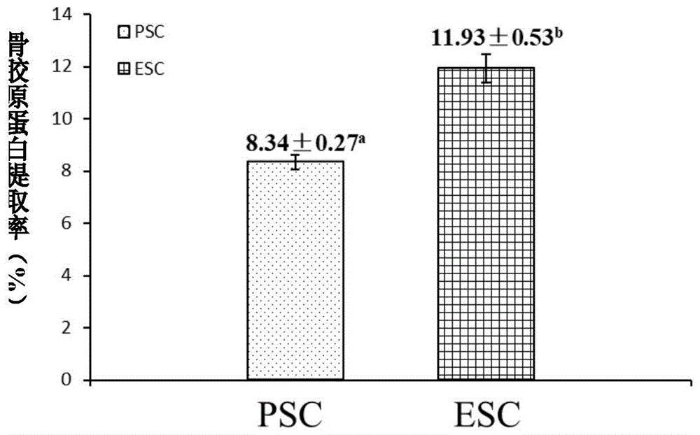 低温酸性蛋白酶PsAPA及其制备方法和应用