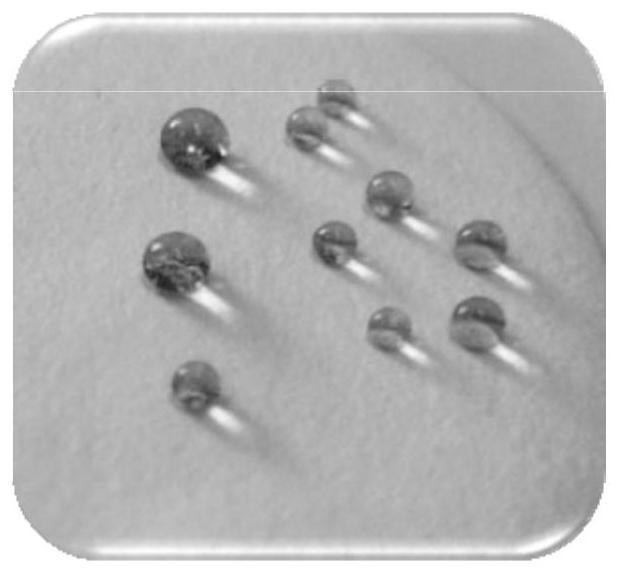 一种可降解疏水防水纸及其制备方法和应用